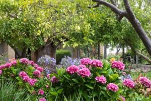 Der Garten der Mission in San Luis Obispo