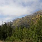 Ein Blick auf die Berge in den Wäldern um den Big Sur